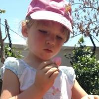 creche investigation in garden