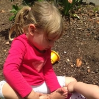 dbugs playtime outside